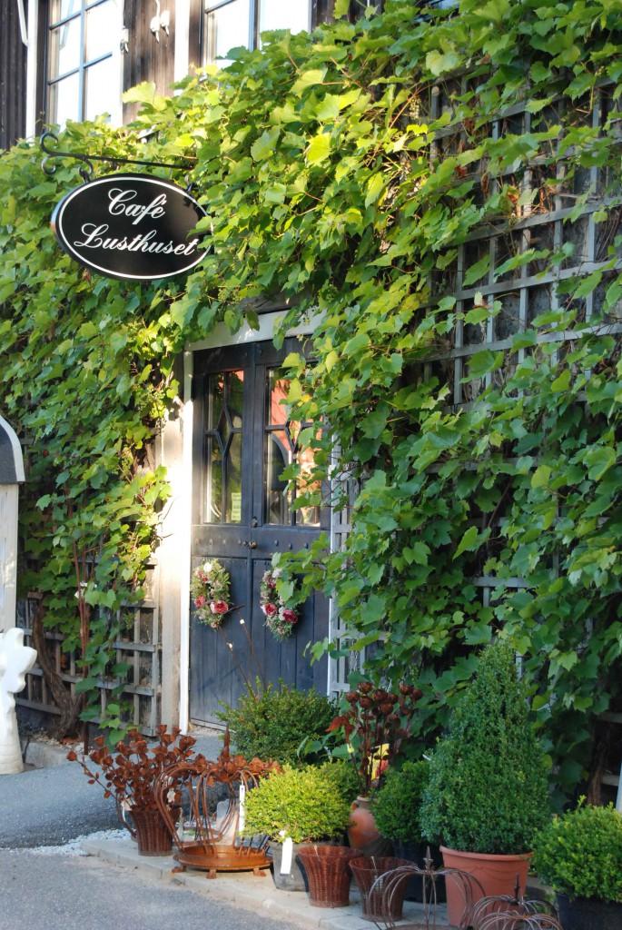 Café-entré-1web-685x1024