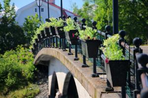 Nu har samtliga blomlådor fått nya sommarblommor planterade. Foto: Fredrik Norman