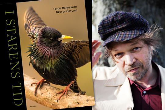 Tomas Bannerhed (I starens tid) är en av författarna som deltar i Bokens Dag i Lindesberg ikväll. Foto: Sofia Runarsdotter