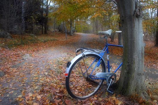 Nu vill kommunen satsa på gång- och cykelvägarna. Foto: Fredrik Norman