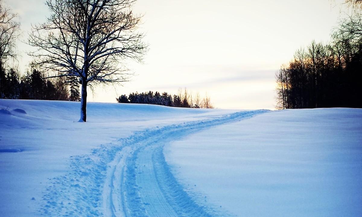 Golfbanan har förvandlats till en plats för skidor och pulka. FOTO: Lindesbergs GK