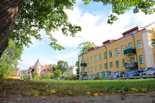 Gamla bostäder inget hinder för bygget av nya. I markerna hittades fornlämningar av husgrunder och odlingslager som kommunen nu tillåts ta bort. Foto: Fredrik Norman