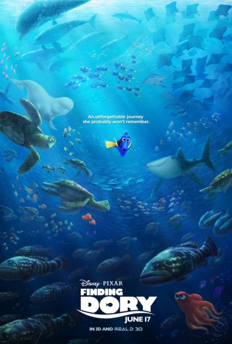 medium_dd9bbe2c9f294a4d2b94687a228281fb-finding_dory_ver6