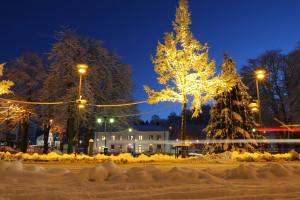 Flugparken i juleskrud. Foto: Fredrik Norman