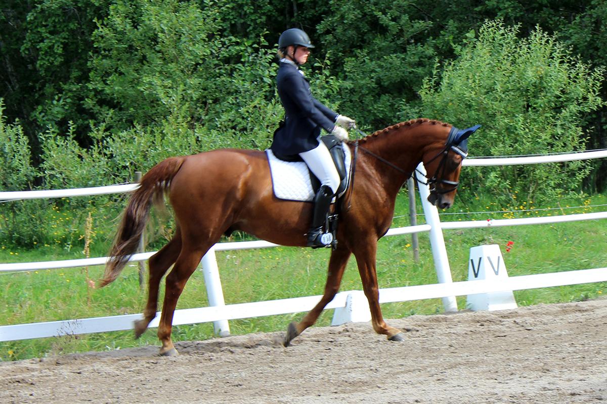 Många duktiga ryttare och hästar deltog i helgens tävling. Foto: Camilla Lagerman
